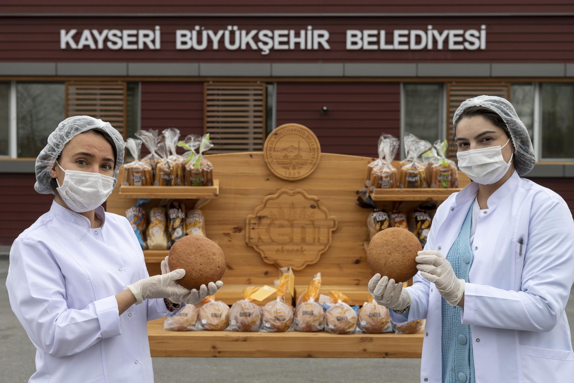 Genetiği Değişmeyen Gacer Buğdayından Ekmek Üretildi 1
